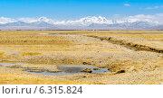 Вид с тибетского плато на гору Эверест (2014 год). Стоковое фото, фотограф Наталья Лихащенко / Фотобанк Лори