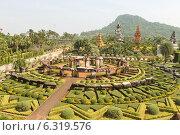 """Тропический сад """"Нонг Нуч"""", Таиланд, Паттая (2013 год). Редакционное фото, фотограф Павлова Дарья / Фотобанк Лори"""