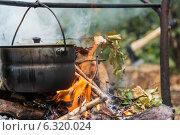 Купить «Приготовление ухи  в котелке на костре», фото № 6320024, снято 11 августа 2014 г. (c) Королевский Иван / Фотобанк Лори