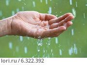 Купить «Ладонь и капли дождя», фото № 6322392, снято 23 мая 2014 г. (c) Павел Родимов / Фотобанк Лори