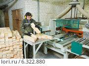 Купить «wood processing manufacture», фото № 6322880, снято 28 января 2014 г. (c) Дмитрий Калиновский / Фотобанк Лори