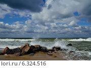 Купить «Балтийский берег в летний шторм», фото № 6324516, снято 20 июля 2013 г. (c) Сергей Трофименко / Фотобанк Лори