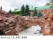 Купить «Брестская крепость», фото № 6341444, снято 12 июня 2014 г. (c) Татьяна Ростовцева / Фотобанк Лори