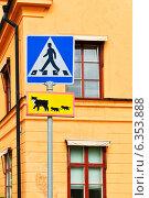 Купить «Осторожно, кошки! Пешеходный переход. Дорожные знаки в городе Уппсала, Швеция», фото № 6353888, снято 24 августа 2014 г. (c) Валерия Попова / Фотобанк Лори