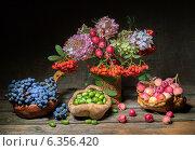 Купить «Натюрморт с осенними плодами,ягодами и рябиной на темном фоне», фото № 6356420, снято 30 августа 2014 г. (c) Дядченко Ольга / Фотобанк Лори