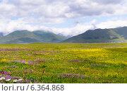 Купить «Красивый горный пейзаж. Кавказ. Армения», фото № 6364868, снято 5 июля 2013 г. (c) Евгений Ткачёв / Фотобанк Лори