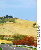 Осенний тосканский пейзаж. Холмы и дорога. Стоковое фото, фотограф masebora / Фотобанк Лори