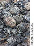 Купить «Печеная в углях картошка», фото № 6370260, снято 7 сентября 2014 г. (c) Наталья Осипова / Фотобанк Лори