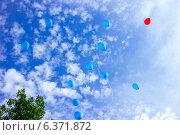 Воздушные шары летят в небо. Стоковое фото, фотограф Артем Федин / Фотобанк Лори
