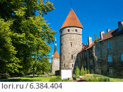 Средневековая стена и башни. Таллин. Эстония (2012 год). Стоковое фото, фотограф Andrei Nekrassov / Фотобанк Лори
