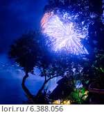Купить «Fireworks display at night, Sayulita, Nayarit, Mexico», фото № 6388056, снято 25 марта 2019 г. (c) Ingram Publishing / Фотобанк Лори