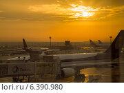 Купить «Аэропорт в Абу-Даби, ОАЭ», фото № 6390980, снято 30 января 2014 г. (c) Анастасия Улитко / Фотобанк Лори