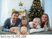 Купить «Celebrations», фото № 6395288, снято 6 декабря 2013 г. (c) Raev Denis / Фотобанк Лори