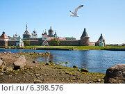 Купить «Соловецкие острова. Вид на монастырь», фото № 6398576, снято 10 июня 2014 г. (c) Юлия Бабкина / Фотобанк Лори