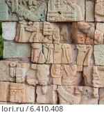 Купить «Mayan ruins at an archaeological site, Copan, Copan Ruinas, Honduras», фото № 6410408, снято 3 января 2013 г. (c) Ingram Publishing / Фотобанк Лори