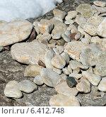 Купить «Closeup of pebbles, Hecla Grindstone Provincial Park, Manitoba, Canada», фото № 6412748, снято 5 мая 2013 г. (c) Ingram Publishing / Фотобанк Лори
