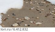 Купить «Pebbles on the beach, Riverton, Hecla Grindstone Provincial Park, Manitoba, Canada», фото № 6412832, снято 25 апреля 2013 г. (c) Ingram Publishing / Фотобанк Лори