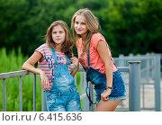 Купить «Две девушки в джинсовых шортах стоят возле железного забора», эксклюзивное фото № 6415636, снято 17 июля 2014 г. (c) Игорь Низов / Фотобанк Лори