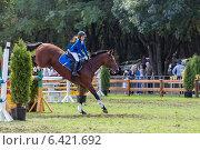 Купить «Девочка наездница верхом на лошади», фото № 6421692, снято 12 сентября 2014 г. (c) Nikolay Sukhorukov / Фотобанк Лори