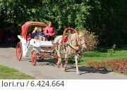 Карета, запряженная лошадью (2014 год). Редакционное фото, фотограф Анастасия Козлова / Фотобанк Лори