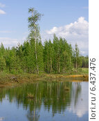 Лесной пруд летом. Стоковое фото, фотограф Вадим Субботин / Фотобанк Лори