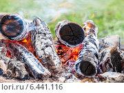 Дрова горят в костре крупным планом. Стоковое фото, фотограф FotograFF / Фотобанк Лори
