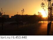 В утреннем тумане. Стоковое фото, фотограф Александра Стельмахова / Фотобанк Лори