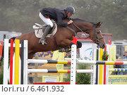 Прыжок в конкуре, профиль (2009 год). Редакционное фото, фотограф vansant natalia / Фотобанк Лори