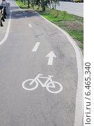 Купить «Велосипедная дорожка (велодорожка) в Москве», эксклюзивное фото № 6465340, снято 21 августа 2014 г. (c) stargal / Фотобанк Лори