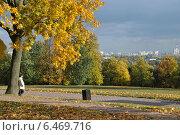 Купить «Осень в Коломенском парке», эксклюзивное фото № 6469716, снято 30 сентября 2014 г. (c) lana1501 / Фотобанк Лори