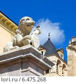 Купить «Скульптура льва на площади Сан-Исидро, город Леон, Испания», фото № 6475268, снято 3 августа 2014 г. (c) Ирина Яровая / Фотобанк Лори