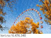 Купить «Колесо обозрения на ВДНХ», фото № 6476340, снято 2 октября 2014 г. (c) Наталья Волкова / Фотобанк Лори