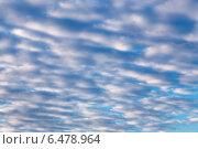 Купить «Легкие перистые облака в голубом небе», фото № 6478964, снято 8 сентября 2014 г. (c) Сергей Лаврентьев / Фотобанк Лори