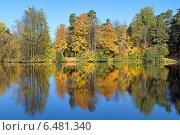 Купить «Симметричный осенний пейзаж с деревьями, отражающимися в воде», фото № 6481340, снято 2 октября 2014 г. (c) Михаил Марковский / Фотобанк Лори