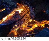 Купить «Огонь - раскаленные угли», фото № 6505956, снято 14 сентября 2014 г. (c) SevenOne / Фотобанк Лори
