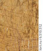 Купить «Желтый мрамор с полосками», фото № 6510512, снято 2 октября 2014 г. (c) Ekaterina Andreeva / Фотобанк Лори