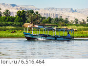Купить «Пальмы и жилые дома на берегах Нила, Египет», фото № 6516464, снято 17 сентября 2012 г. (c) Олег Жуков / Фотобанк Лори