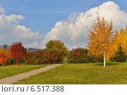 Купить «Золотая осень в ландшафтном парке, Митино, Москва», фото № 6517388, снято 11 октября 2014 г. (c) Валерия Попова / Фотобанк Лори