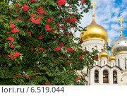 Купить «Зачатьевский Монастырь, фокус на храме», фото № 6519044, снято 13 сентября 2014 г. (c) Павел Лиховицкий / Фотобанк Лори