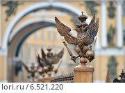Купить «Петербург. Геральдический бронзовый орел на фоне арки Главного штаба», эксклюзивное фото № 6521220, снято 12 октября 2014 г. (c) Александр Алексеев / Фотобанк Лори