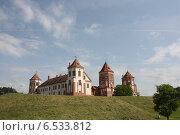 Купить «Мирский замок Беларусь», фото № 6533812, снято 24 мая 2013 г. (c) Евгения Шитюк / Фотобанк Лори