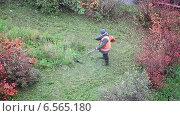 Купить «Рабочий скашивает траву бензокосой на лужайке», видеоролик № 6565180, снято 21 октября 2014 г. (c) Кекяляйнен Андрей / Фотобанк Лори