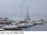 Яхты в порту Сочи, Россия (2014 год). Редакционное фото, фотограф Алина Щедрина / Фотобанк Лори