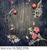 Винтажный зимний фон с розами. Стоковое фото, фотограф Светлана Витковская / Фотобанк Лори