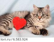 Купить «Серый котенок и сердце», фото № 6583924, снято 4 июня 2013 г. (c) Останина Екатерина / Фотобанк Лори