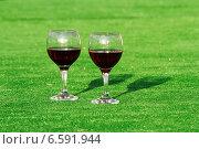 Купить «Бокалы с вином», фото № 6591944, снято 11 июля 2014 г. (c) Хайрятдинов Ринат / Фотобанк Лори