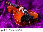 Купить «Скрипка на фиолетовом фоне», фото № 6593648, снято 27 октября 2014 г. (c) Павел Лиховицкий / Фотобанк Лори