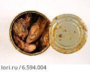 Рыбные консервы. Стоковое фото, фотограф михаил красильников / Фотобанк Лори