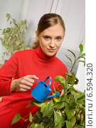 A young woman watering potted plant, фото № 6594320, снято 17 января 2017 г. (c) Joanna Malesa / Фотобанк Лори