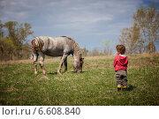 Купить «Одинокий пастух», фото № 6608840, снято 1 мая 2014 г. (c) Блинова Ольга / Фотобанк Лори